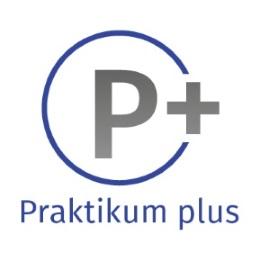 P-plus-Wort-Bildmarke-mittel.jpg